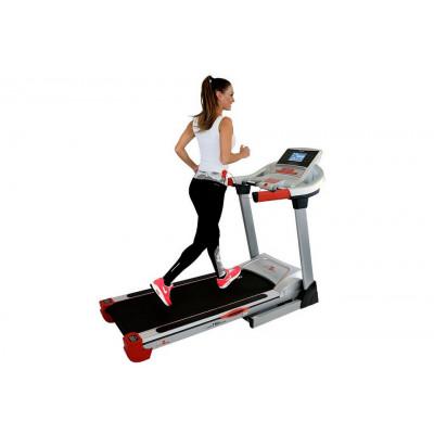 運動、健身